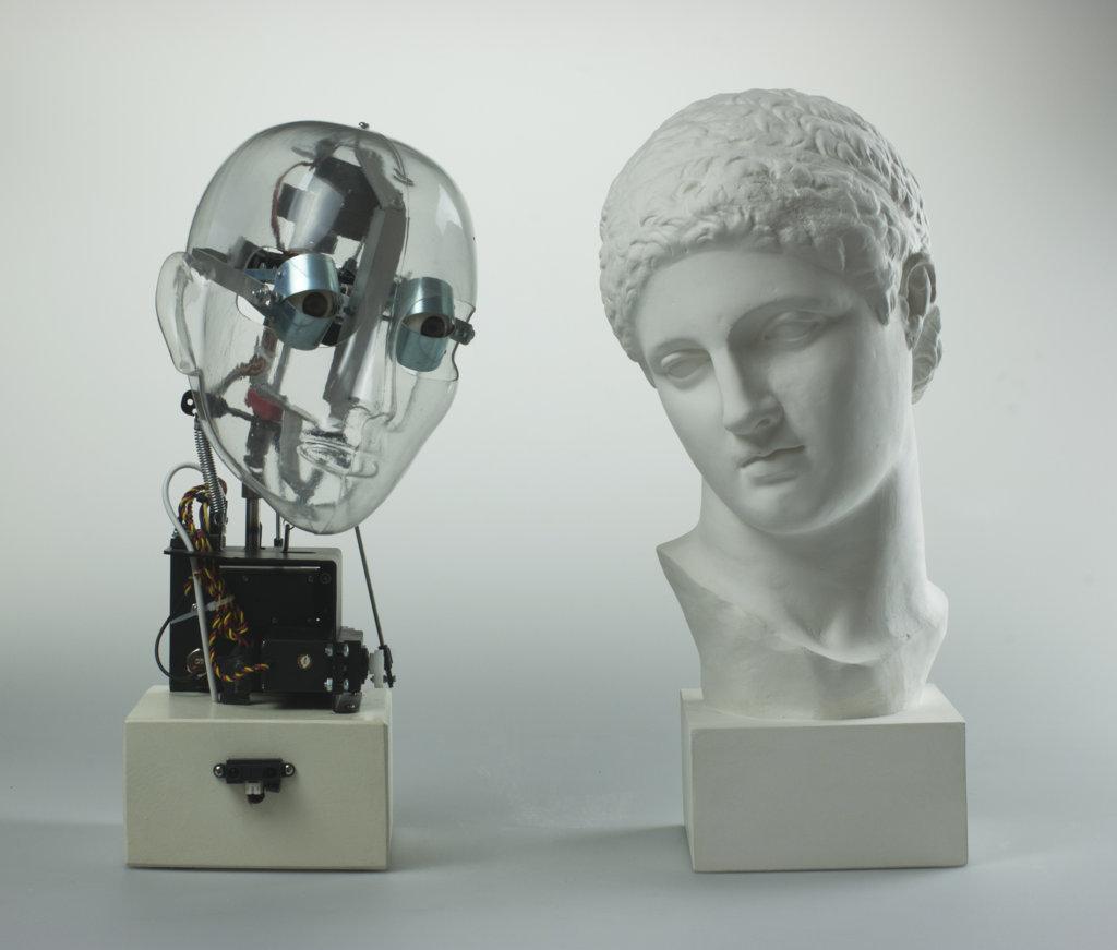 Affective Robot Vs Naukides Discobolus